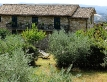 agriturismo-colle-degli-olivi-1420-02