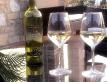 colle-degli-olivi-200017